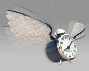 time-flies-clockmain